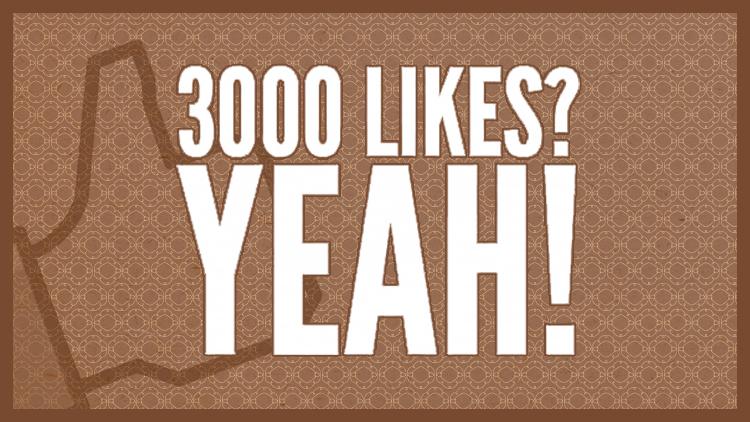 3000fans